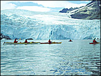 Aialik Glacier Sea Kayaking