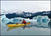 Sea Kayaking Bear Glacier