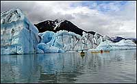 Bear Glacier Lake Ice Bergs