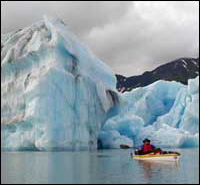 Bear Glacier Ice Bergs Sea Kayaking